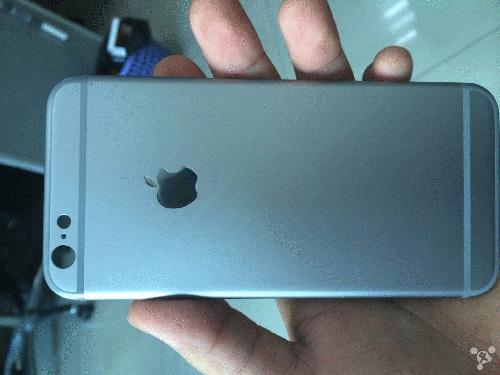 iPhone 6 背面パネルのショット