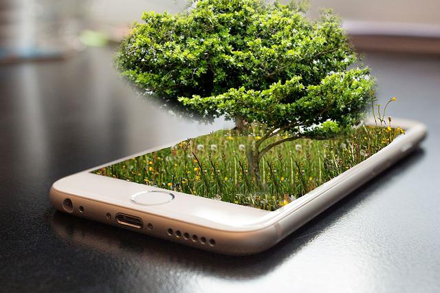 スマホ依存症が改善?我慢すると木が育つアプリが人気